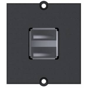 Ramka modułowa inform. 2xUSB 2.0 A/A czarna (917.141)